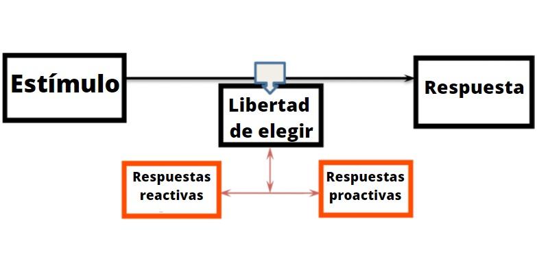 Estímulo - resposta (teoria)