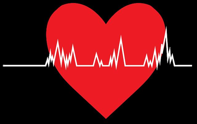 Perfil cardíaco: lesões cardíacas, marcadores cardíacos 9