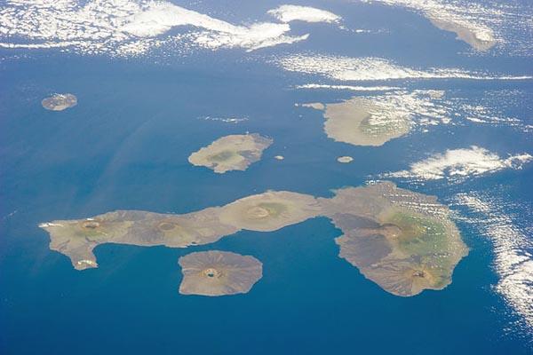 Flora e fauna das Ilhas Galápagos: principais espécies