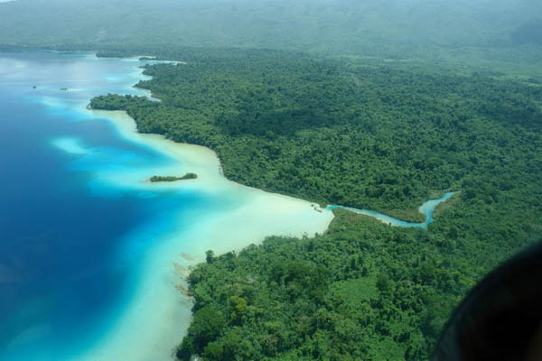 Floresta tropical no México: características, localização, relevo, flora, fauna